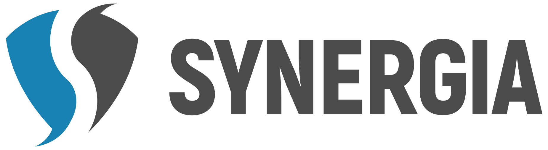 Synergia management czech s.r.o.